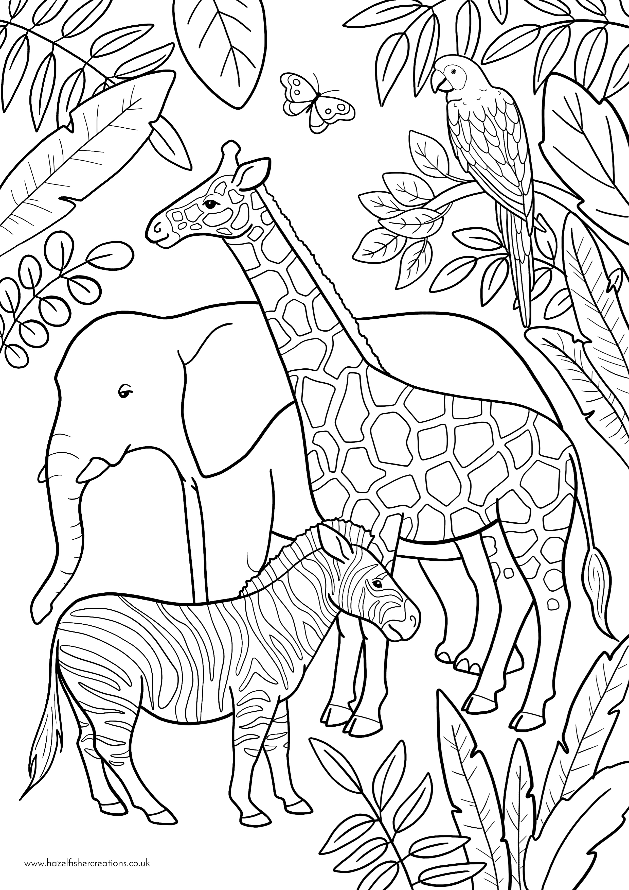 Zoo Animals Colouring In Activity Sheet   image
