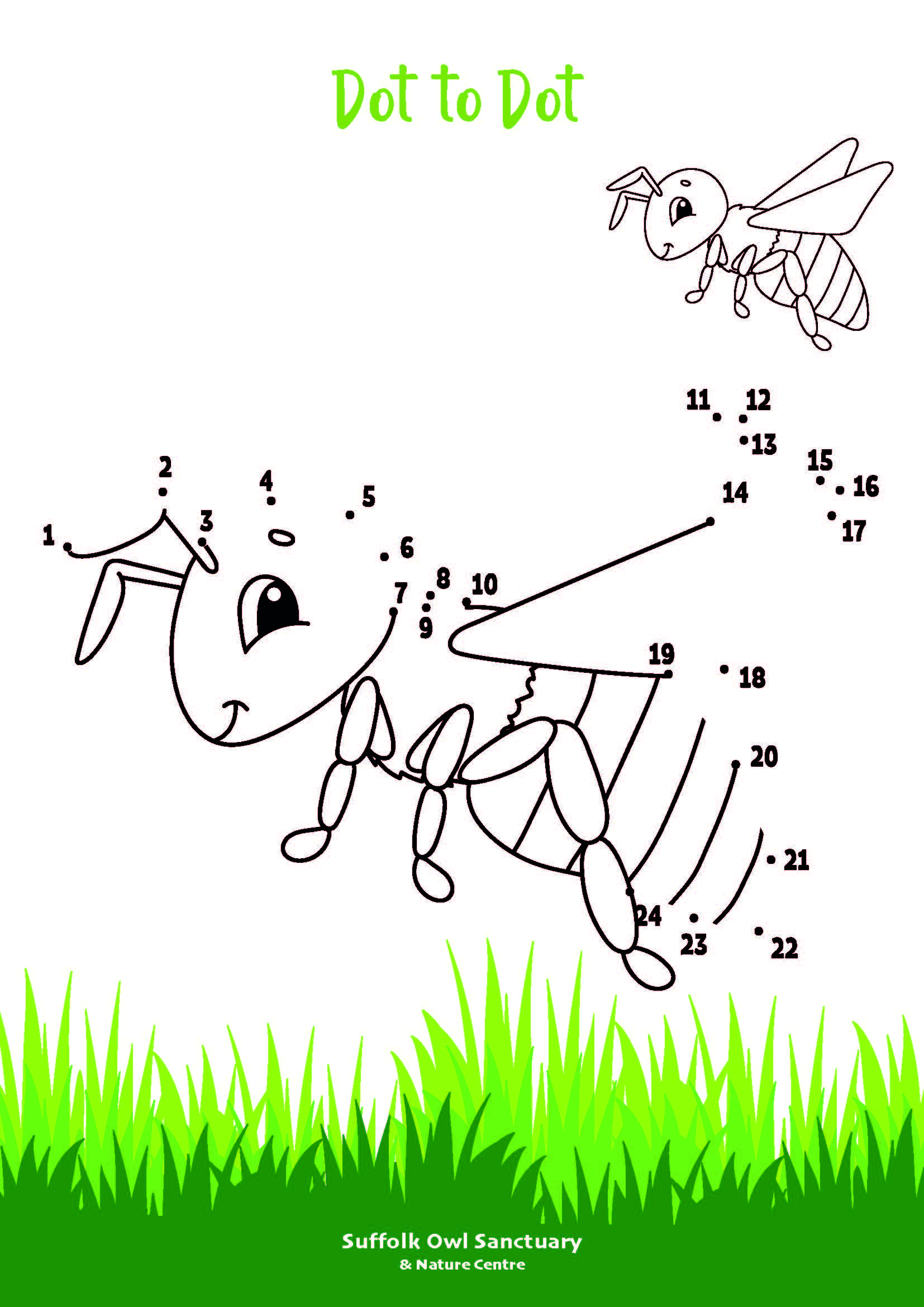 Bee Dot to Dot Activity Sheet  image