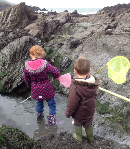 Rock pooling at the Tunnels Beaches